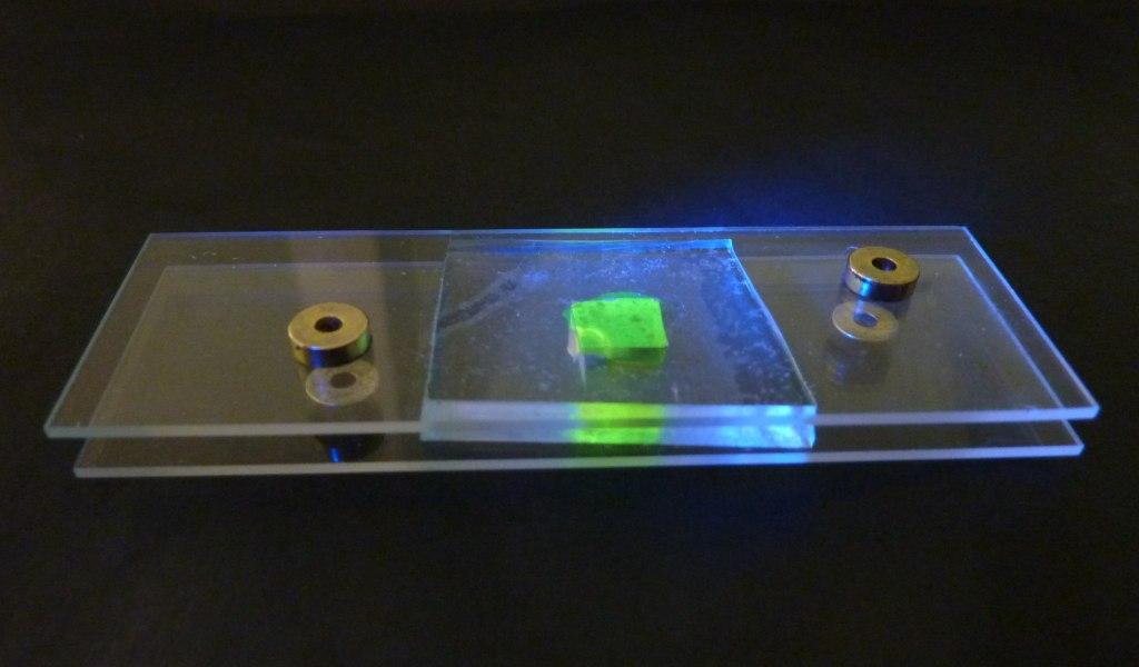 liquid_cell_fluoresent2